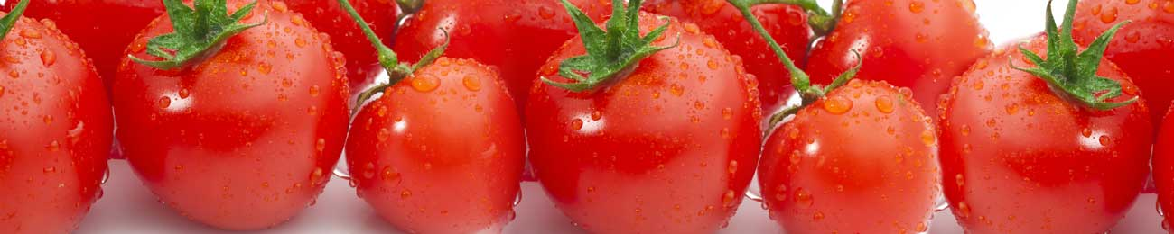 Splashbacks Glass design - Fresh wet tomatoes - 100229 Image