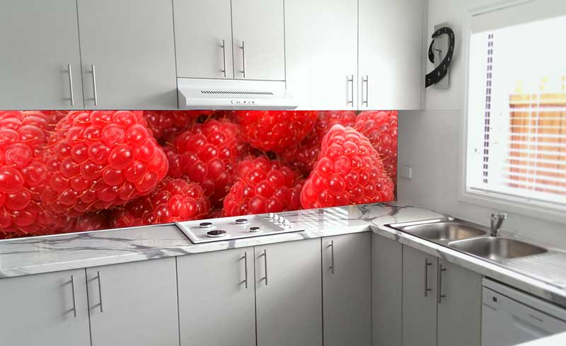 Splashbacks Glass design - Red Berries - 100257