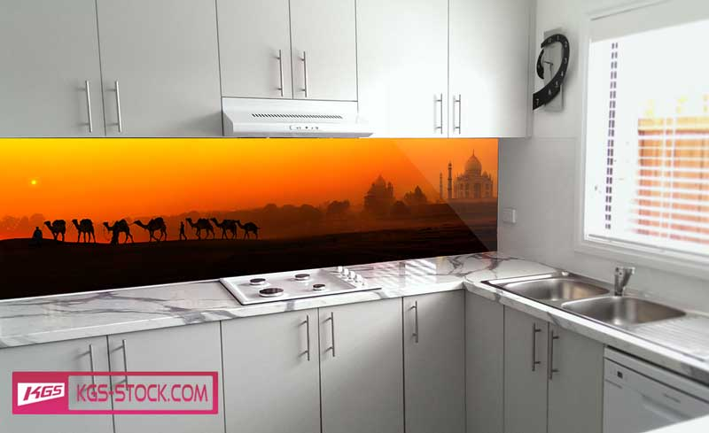 Splashbacks Glass design - Camels in the desert - 100659