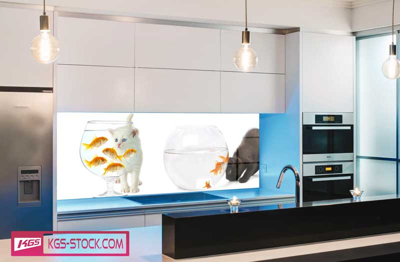 Splashbacks Glass design - Cats and fishes - 100665