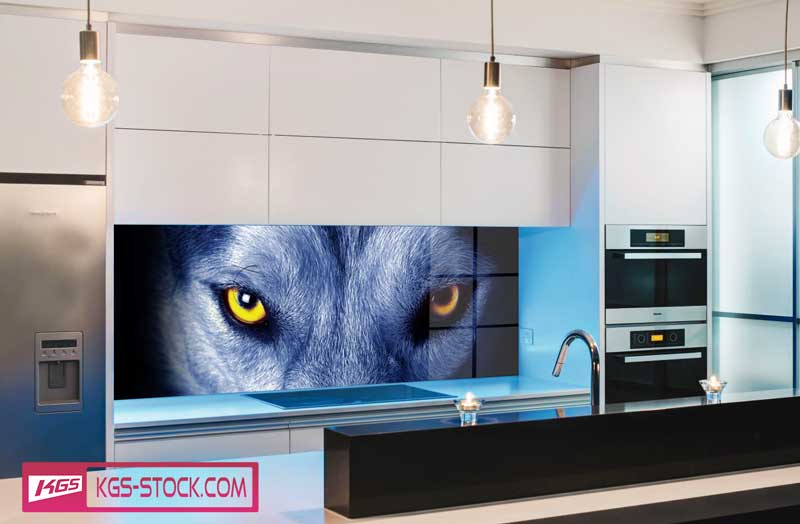 Splashbacks Glass design - Wolf eyes - 100666
