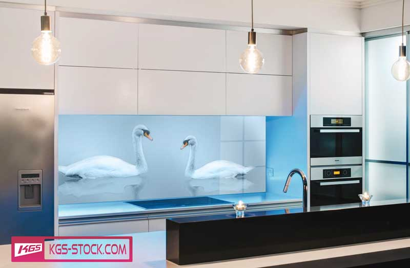 Splashbacks Glass design - Swans in the fog lake - 100668