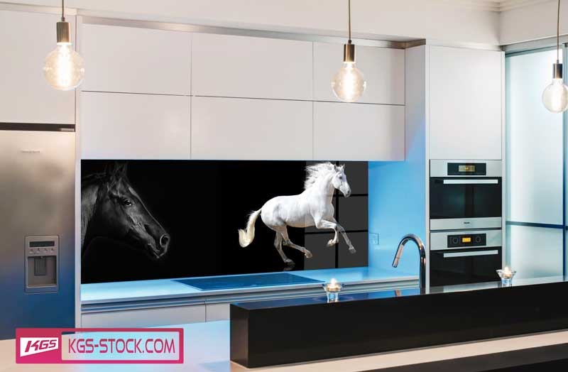 Splashbacks Glass design - Triple color amazing horses - 100669