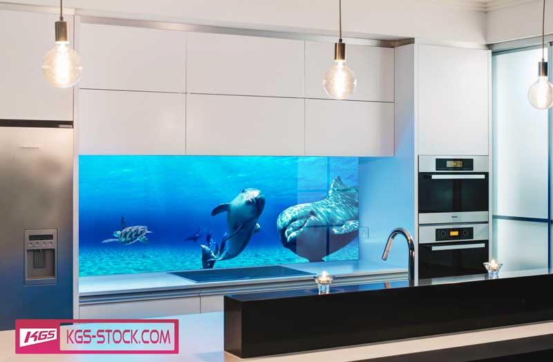 Splashbacks Glass design - Dolphins under water - 100604