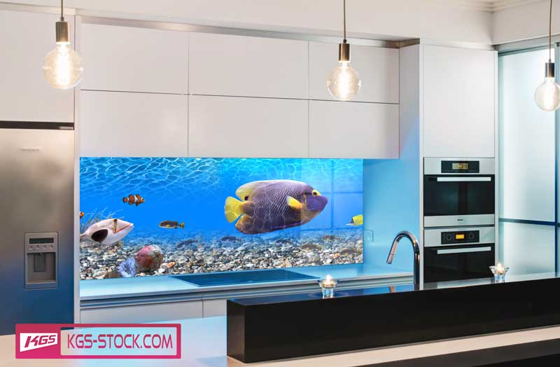 Splashbacks Glass design - Amazing world under ocean - 100673