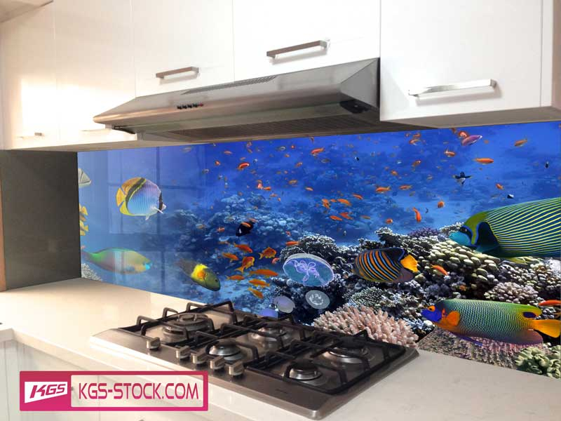 Splashbacks Glass design - Blue ocean world and colorful fishes - 100675