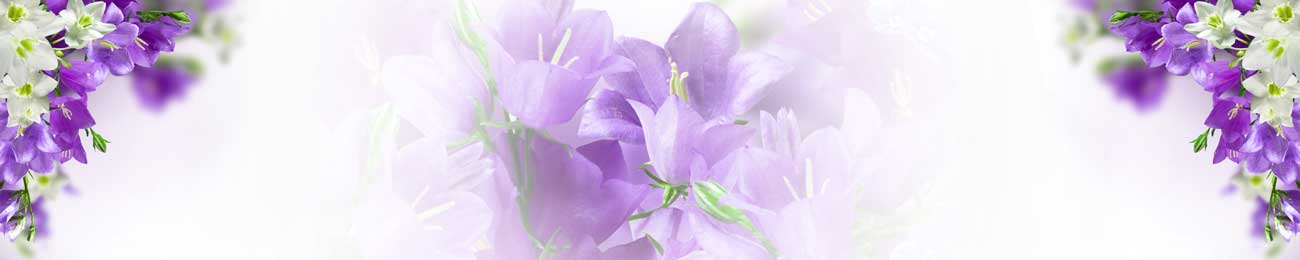 Дизайн для скинали - Purple and white flowers - 100555 Image