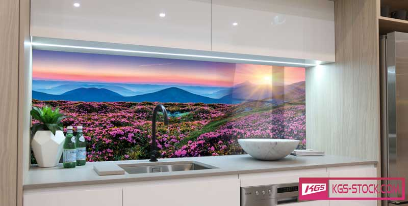 100501 Kitchen Splashbacks Glass Print Design Flower Field