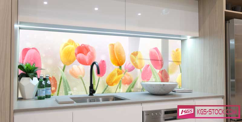 100503 Kitchen Panoramic Designs For Splashbacks Glass Print