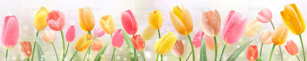 Splashbacks Glass design - Tulips field - 100503 Image