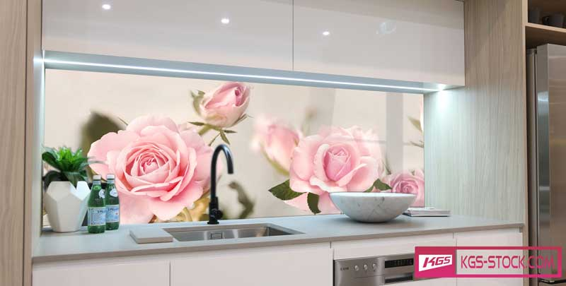 Splashbacks Glass design - Beautiful Pink roses - 100517