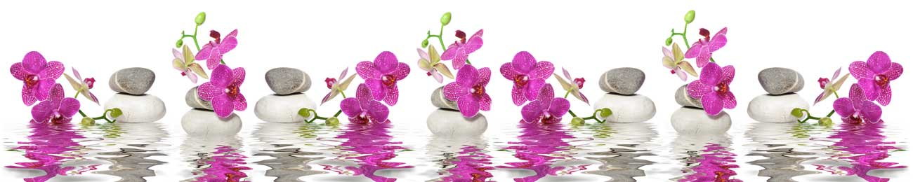 Splashbacks Glass design - Purple Orchids and stones in water - 100575 Image