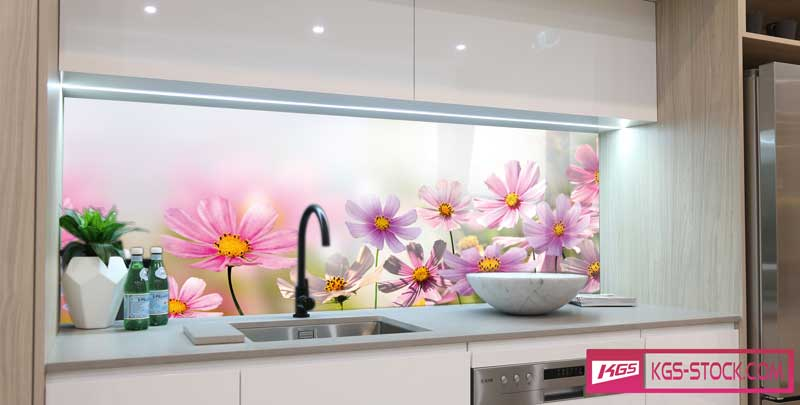 Splashbacks Glass design - Pink Chamomile and flowers field - 100582