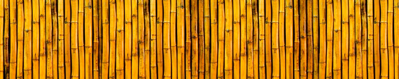 Splashbacks Glass design - Yellow bamboo - 100442 Image