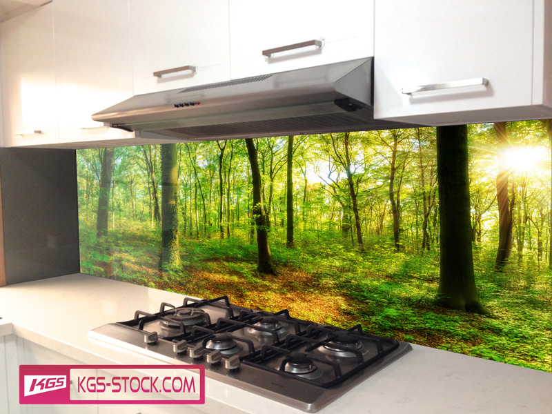 Splashbacks Glass design - Sun in the forest - 100404