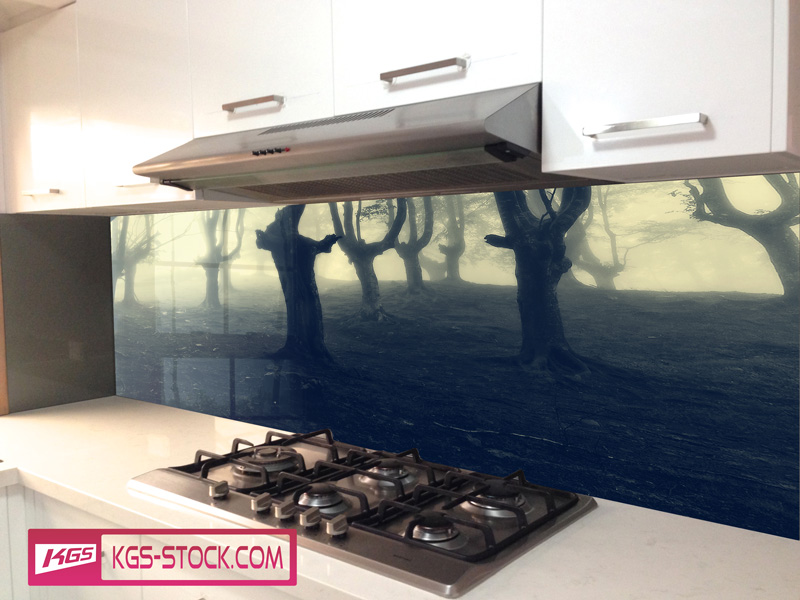 Splashbacks Glass design - Dark Wood - 100405