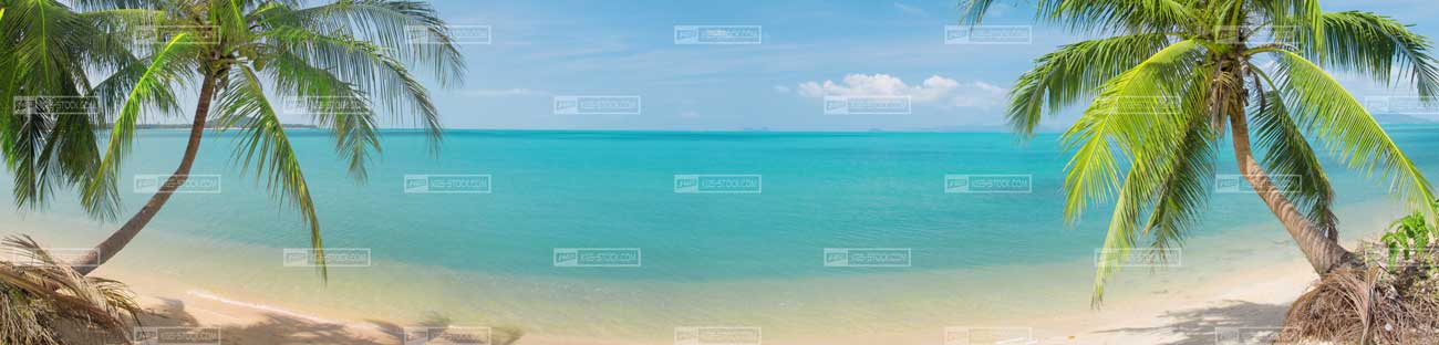Splashbacks Glass design - Tropic beach - 100412 Image