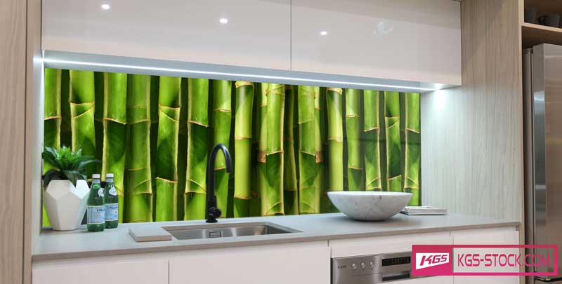 Splashbacks Glass design - Bamboo tree - 100422