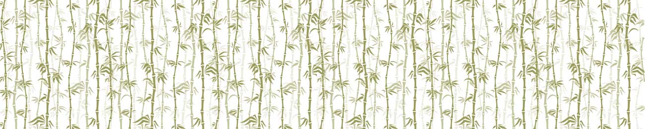 Splashbacks Glass design - Bamboo tree forest - 100426 Image